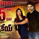 RT @idlebraindotcom: Karthikeya Terrific 25th day ad