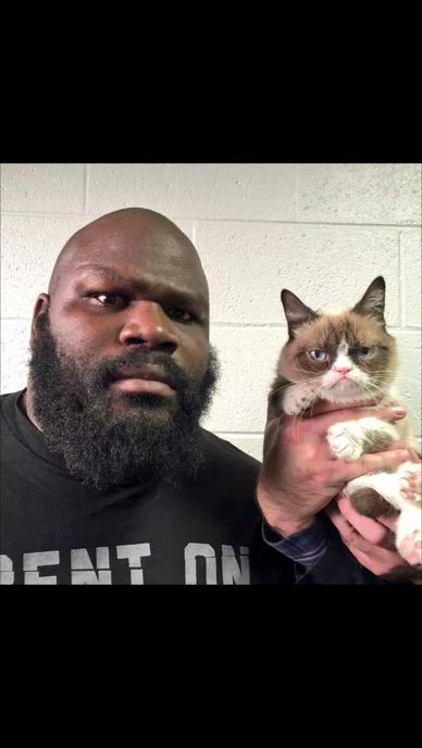 This cat is rich as hell. http://t.co/P93ueCByuM