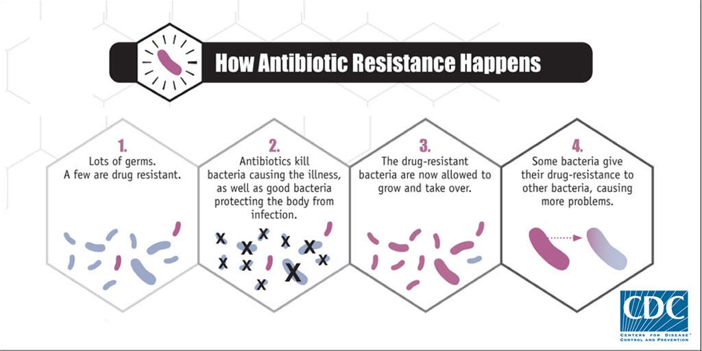 Learn how bacteria become resistant to antibiotics: #SaveAbx #AntibioticDay http://t.co/cAi3ZBRFjY