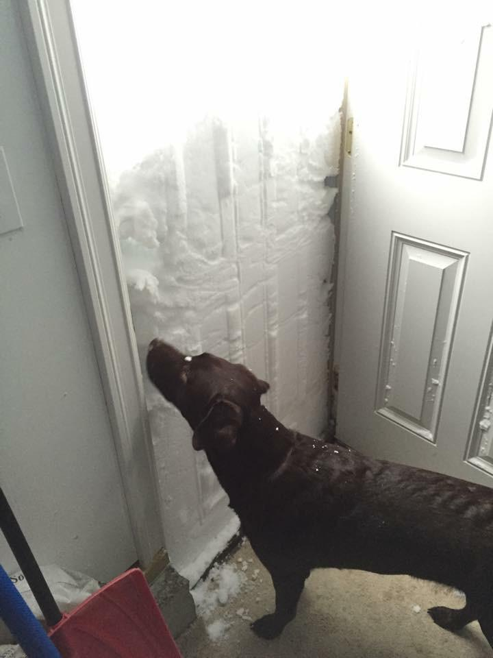 How would you like to open your front door and see this? East Lancaster, NY… Photo from Tara Schwab #nywx http://t.co/tzkaBcVNJp
