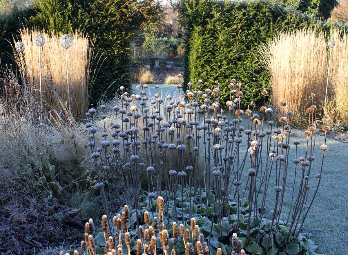 And why resisting a big autumn clear up pays you back handsomely... #frost http://t.co/c07d15P5Wl