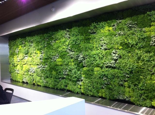 Wishing everyone a very happy #GreenWallWednesday :) http://t.co/HYwVYntjAP