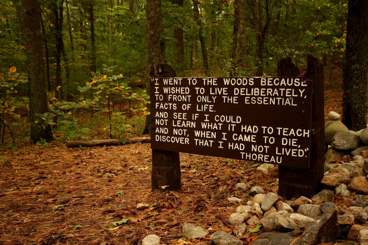 """I went to the woods..."" #Thoreau. Why do you go to the #woods? We would love to hear... http://t.co/Ev70X4nkR8"