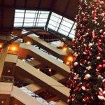 So yeah, thats a tall tree. #Christmas #Spokane #Thanksgiving @RiverParkSquare @929zzu http://t.co/nia4irSVQ7