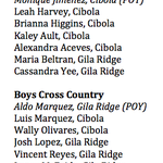 Well, here we go. Our Yuma Sun/Yuma Rotary Club All-Region Team for boys and girls cross country http://t.co/JSJqSCAz9q