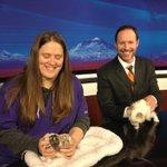 A cat...and RATS! #ktvz #petpals #inbend @MattKTVZ WATCH @KTVZ now. http://t.co/wcuKgOvFUg