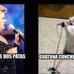 Jajajaja Paquita la del Barrio http://t.co/p6HtX10hck