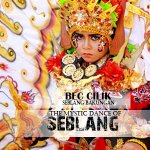 "saksikan BEC 4 The mystic Dance of Seblang "" BEC CILIK"" @banyuwangi_kab http://t.co/Lq1rzLVHvH"