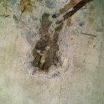 Calefont????filtraciones???? destapes de baños????@DonDatos presupuestos de gasfiteria @donpituto 74717530 concepción RT http://t.co/dZvG24imWV