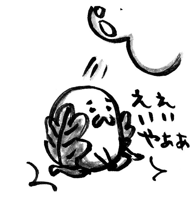 昨日から「ええいいやぁ尻から柏餅」という謎フレーズに頭を支配されている http://t.co/VDdgj3zdOc