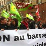 manifestation pacifique contre le barrage de #sivens et les violences policières avec @EELVToulouse http://t.co/KbiaOH0Y8Z