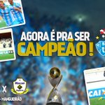 Agora é pra ser campeão.  Vamos Paysandu, vamos fiel. #EmBuscaDoTri http://t.co/GkBYU0FzxH