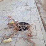 #سيلفي_حفرة  حفرة صرف صحي مفتوحة مقابله لسور مدرسة بنات ( جدة/ الاسكان الجنوبي مقابل مجموعه ١٠ عمارة ١٥ http://t.co/NqV8dD0vwt