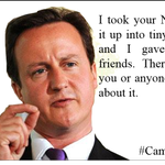 This is probably the number one reason that #CameronMustGo http://t.co/VISTsi9dQl
