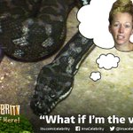 Are you as disappointed as @antanddec by @KendraWilkinson's Catacombs of Doom performance? #ImACeleb http://t.co/CP2UCPA9Vc