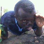 Vile wasee wa Arsenal wanacheki TL http://t.co/JitHwWUHWv
