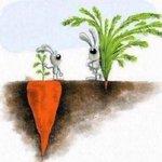 O sucesso nem sempre é o que você vê! http://t.co/k4pRU3NEhY