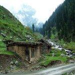 Wooden Home / Hut in Heavens #Kashmir #Pakistan !! @IftikharFirdous @DailyObvious @Pakistaninpics @ShirazHassan http://t.co/rG5YKD4WIo