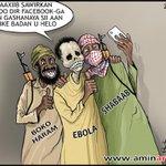 Photo; #Somalia cartoonist #AminAmir categorizes #AlShabaab #BokoHaram & #Ebola as three birds of the same feather. http://t.co/dqM24n95nj