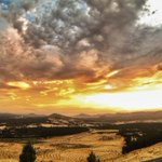 Scooted up Dairy Farmers Hill @NatArboretum for sunset tonight - love that its so close to home. #humanbrochure http://t.co/AhM9Y5KRDE