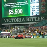 This streaker going to extreme lengths to replicate the Behardien stretch. #AUSvSA http://t.co/GLIlNi6V3F http://t.co/ow4vvHr8br