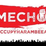 #OccupyHarambeeAve More information coming soon. #Tumechoka http://t.co/8Pevof7P43
