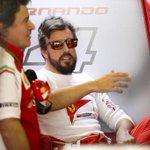 #F1 | El rey Juan Carlos desvela dónde correrá Fernando Alonso en 2015. http://t.co/80KjLMh5x1 http://t.co/l6CLpEtoXl