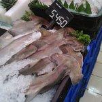 """@riaqorina: Bayi hammerhead shark yg dilindungi ini ada di @carrefour_id ambarukmo plaza,jogja.#savesharks http://t.co/NF2Sqeks6v"" ih.."