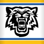 Use your @Ticats game ticket as your #TicketToRide the #HSR FREE to and from the game today. #HamOnt http://t.co/pUmZpfVaH8