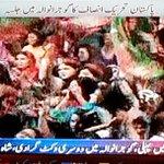 #ShameOnPatwarKhana These are real suporters of PTI, PTI Tigresses, nt like ur paid #SlavePatwari http://t.co/00TOVifmsL