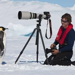 だいたいコウテイペンギンはカメラを怖がらないどころか積極的に近づいてきてそのまんま乗っ取る http://t.co/0hIdvM7LcY