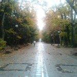 Campo Grande #Valladolid http://t.co/IszLcRYYmA