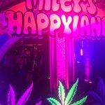 Happy 22nd @MileyCyrus! absolutely insane night hahaha http://t.co/78IQXSZene