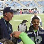 MP shooting survivor @NateDeezy21 & Taima the hawk hang on the Seahawks sideline. #ARIvsSEA http://t.co/5DXYP4VoQN