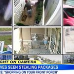 Package thieves; how to stop them stealing from your doorstep. http://t.co/MuZZyULbk8