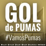 GOOOOOOOOOOOOOOOOL de nuestros #Pumas. http://t.co/jhFok2383c