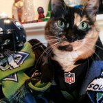 Big day for football in #Seattle! Time to send some #GoodPlayoffKarma to @SoundersFC, and get #LOUDER for @Seahawks! http://t.co/tSdYYeZqC7