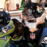 @komonews Were in! For all #Seattle football games today! #JerseysOnScarvesUp #GoHawks #GoSounders http://t.co/5lyevvuFGv