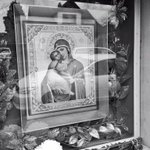#virgin #driveby #flowers #reflection #pdx #photograph #SundayFunday #bnwlife #bnw_society #pdx #ryannemethstudios http://t.co/KJwKyFxA36
