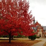 Fall at Huntingdon College, Montgomery, AL @spann http://t.co/QYP4XLE5Ai