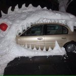 """That takes dedication. And entirely too much #snow """"@mikewhitmore: Winter antics in Buffalo, NY http://t.co/OKJPWdobN2"""" #BuffaloSnow"""