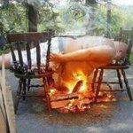Yo intentando quemar grasas http://t.co/RS2lSAa2q0