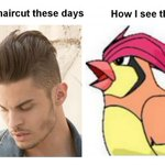 Mens haircut these days... Pidgeotto, Pidgeotto everywhere http://t.co/ElLEtTq542 http://t.co/FEURlPeeWl