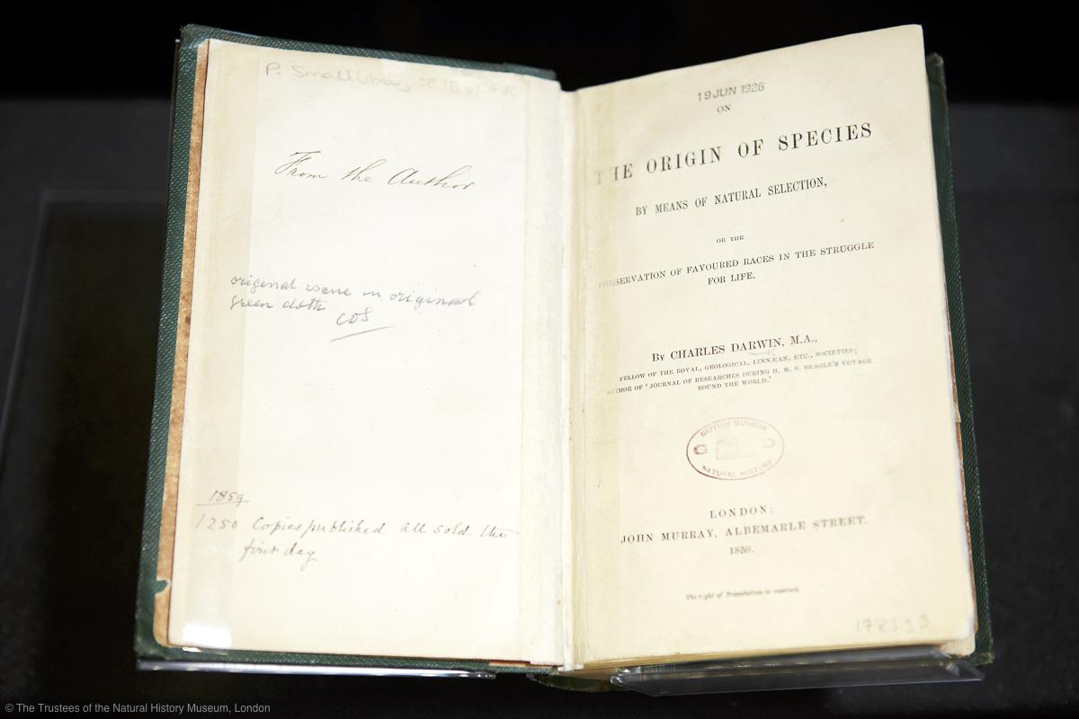 155 years ago, on 24 Nov 1859, Darwin's 'On The Origin of Species' is published; all 1,250 copies are sold in one day http://t.co/XBTjiotsdc