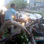 Orang ramai alih dahan kayu yg halang laluan di Jln Bangsar selepas hujan lebat di KL. Pix Farizul Hafiz Awang http://t.co/es5XT4MjlH