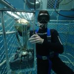The world cup trophy went underwater with former Australian international player Shaun Tait http://t.co/zsVbs96LWC