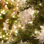 Holiday Traditions from Around the World opens at @MeijerGardens tomorrow http://t.co/hLWPS4vTBT http://t.co/ZfpOw7njDW
