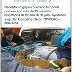 Por favor compartir: en #LaPaz o #ElAlto @soypaceno @lapaz http://t.co/Y88gXupcA6