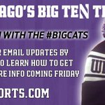 Dont wait in Black Friday lines; well bring a #B1GCats deal for this hat to your inbox! http://t.co/Wb3Piv3PQa http://t.co/ExlcsX0qQ1