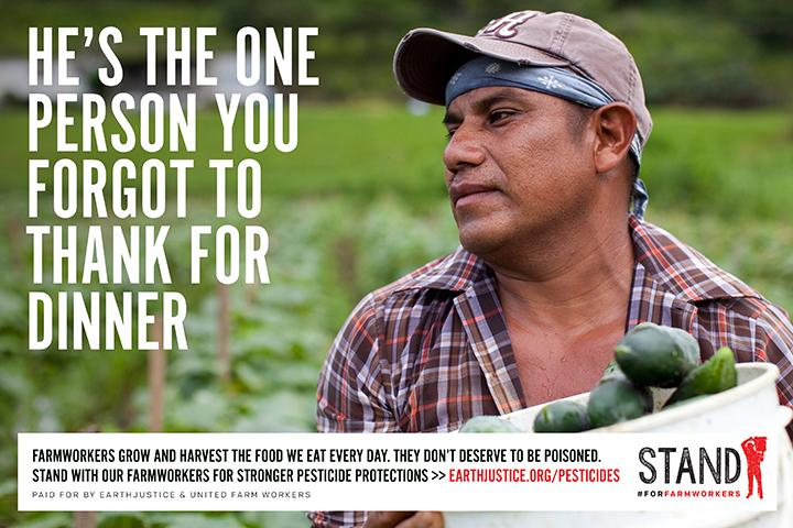 There's someone you forgot to thank for dinner. Stand #ForFarmworkers on Intl Food Worker Week http://t.co/VgX0S8WZxv http://t.co/Lofl9XR6Wz